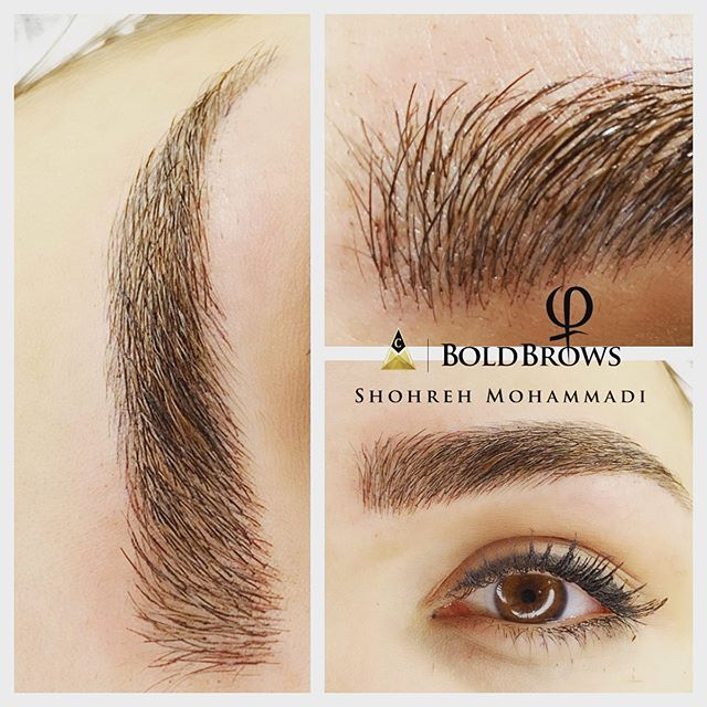 Bold Brow Treatment by Shohreh